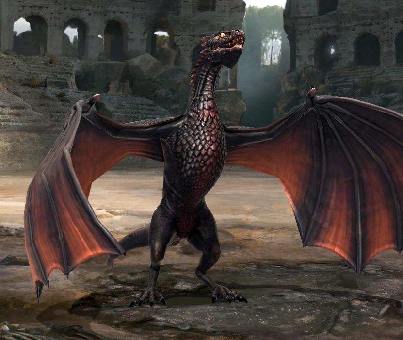 Dragon adulte