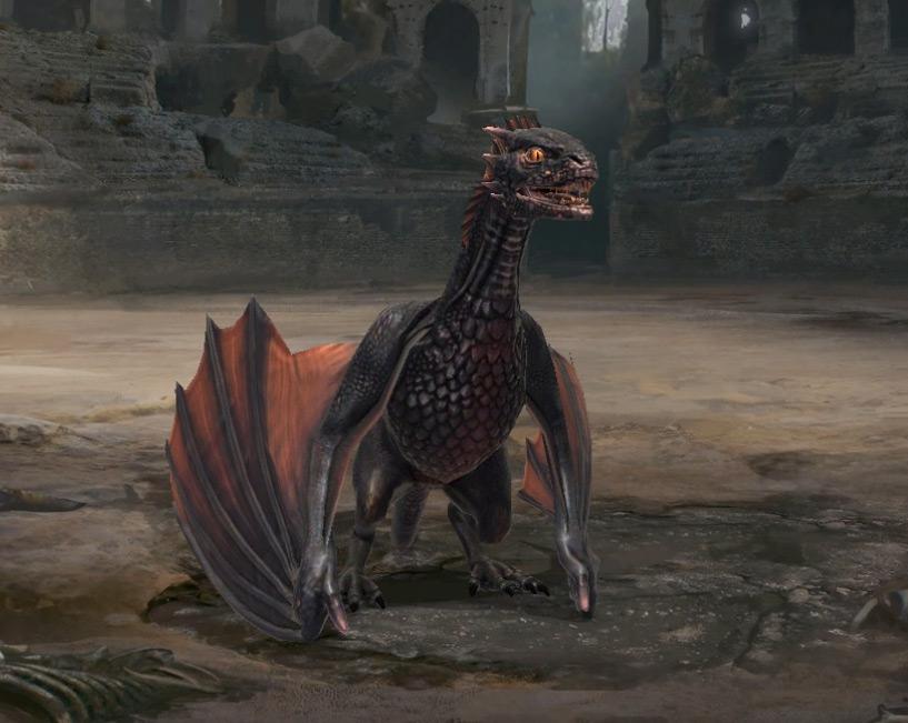 Dragon au stade adulte