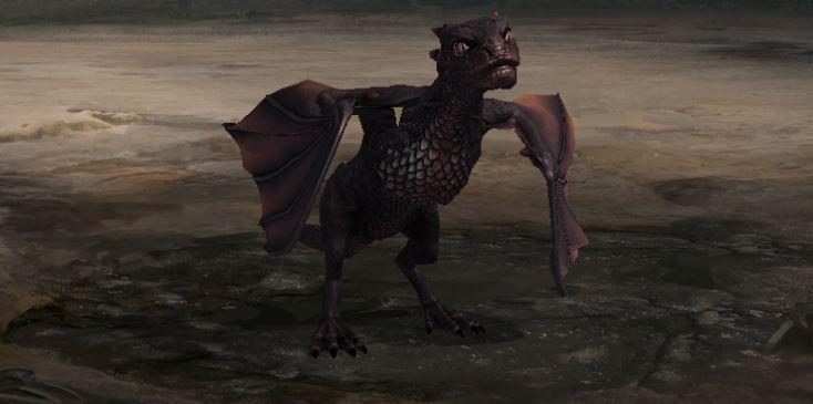 Dragon stade jeune