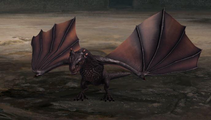 Le petit dragon déploie ses ailes