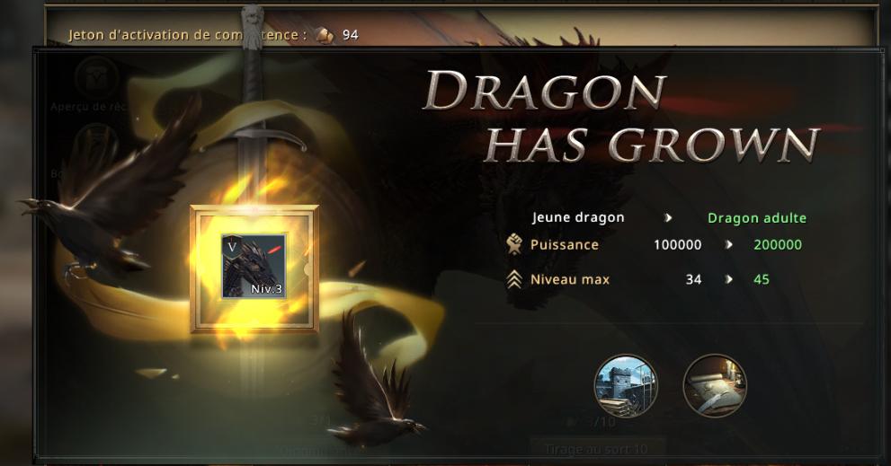 Dragon stade adulte