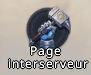 Icone interserveur