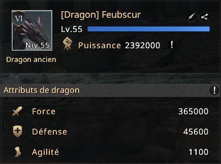 Niveau de mon dragon