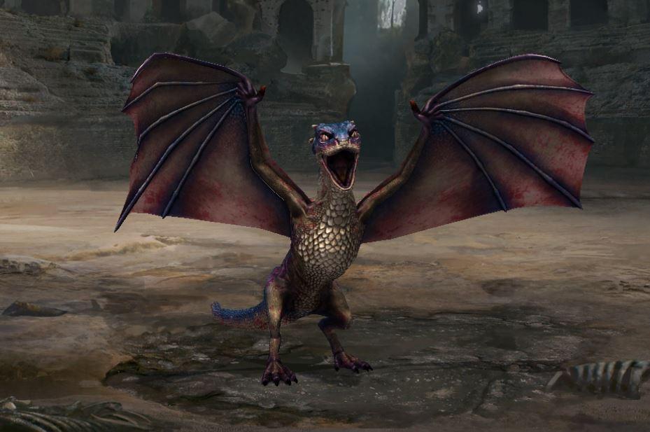 Dragon 2 stade Drac I