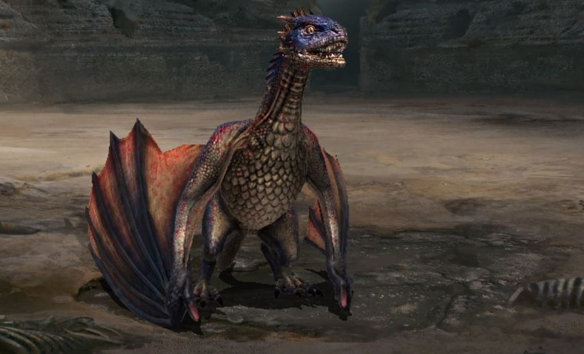 Dragon adulte I