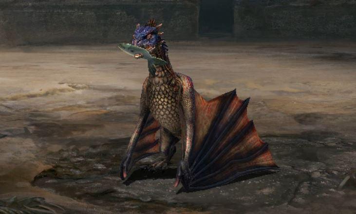 Repas du jeune dragon