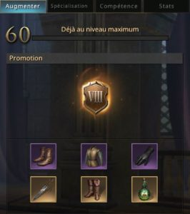 Equipement d'Arya complet