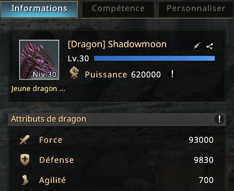 Dragon niveau 30