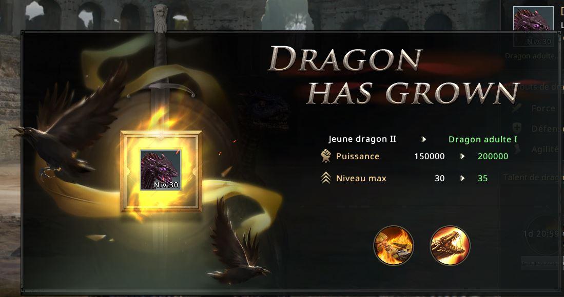 Croissance du dragopn vers stade jeune adulte